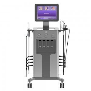 High Quality 3d Hifu - 9 in 1 hydra beauty skin system Hydro dermabrasionand Hydra Microdermabraision Machine – Sincoheren